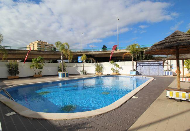 Apartamento em Praia da Rocha - T1 Praia da Rocha/Gaivota Mar 4