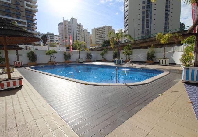 Apartamento em Praia da Rocha - T1 Praia da Rocha/Gaivota Mar 6