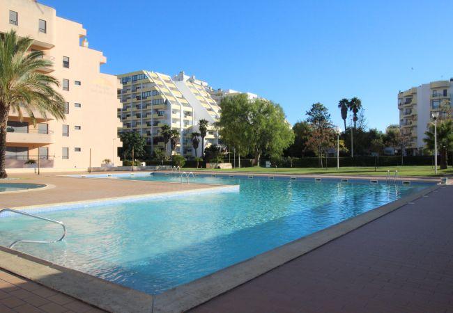 Apartamento em Praia da Rocha - T1 Praia da Rocha / Paraíso Sol da Rocha 3